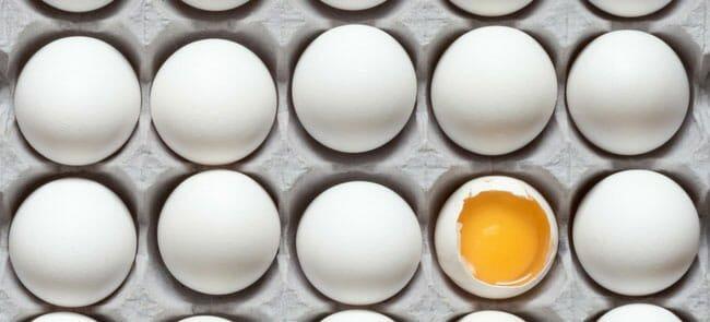 نگهداری تخم مرغ