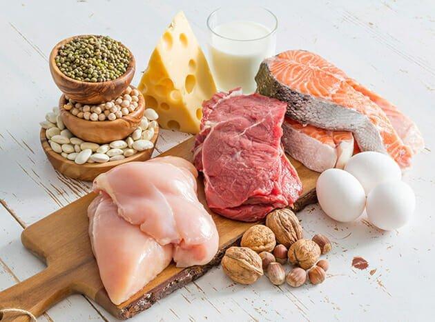 پروتئین چیست