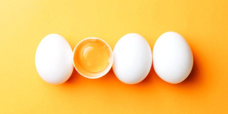 جایگزین تخم مرغ در رژیم وگان