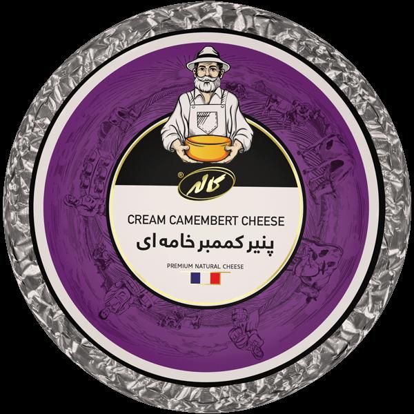 پنیر کممبر خامه ای قالبی