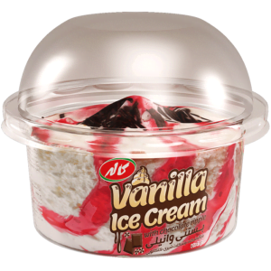vanilla-icecream-with-chocolate-ripple